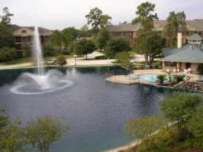 Kingwood Condo/Townhouse For Sale: 2815 Kings Crossing Drive #311