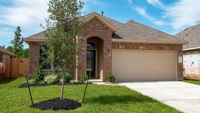 Spring Single Family Home For Sale: 4763 Creekside Haven