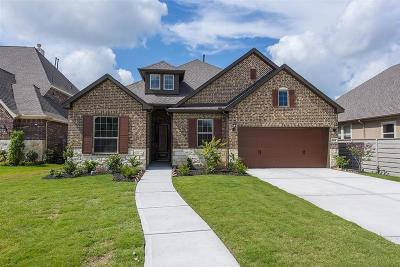 Manvel Single Family Home For Sale: 2614 Redbud Trail