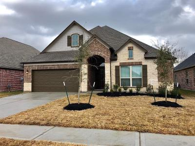Houston Single Family Home For Sale: 4130 Grand Sunnyview