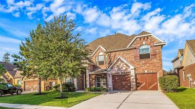 Spring Single Family Home For Sale: 28023 Comal Karst Drive