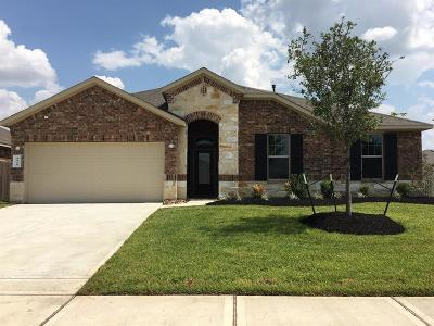 Katy Single Family Home For Sale: 4810 Vergano Villa Drive