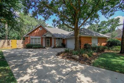 Houston Single Family Home For Sale: 7611 Rock Falls Court