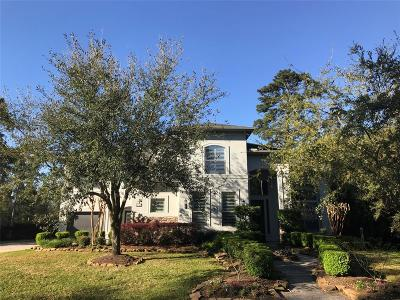 Houston Single Family Home For Sale: 2706 S Cotswold Manor Drive