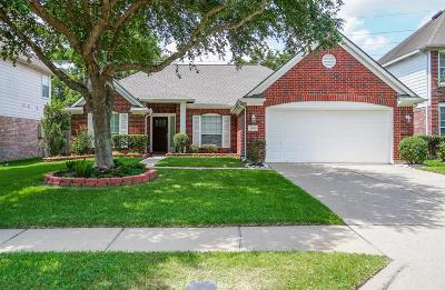 Sugar Land Single Family Home For Sale: 15702 Rosewood Hill Court Court