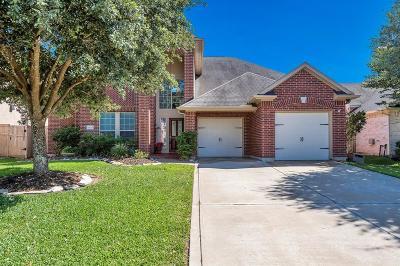Fulshear Single Family Home For Sale: 28215 Cross Creek Springs Lane