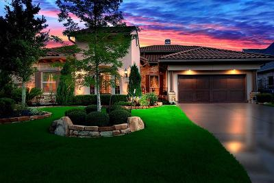 The Woodlands Single Family Home For Sale: 31 Lake Reverie Place