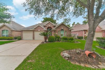 Houston Single Family Home For Sale: 10014 Willow Wood Way