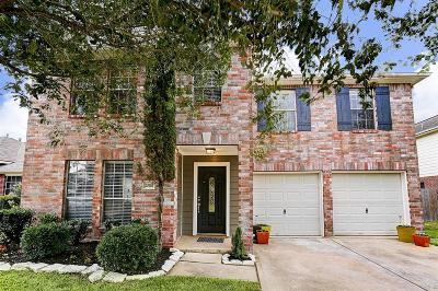 Katy Single Family Home For Sale: 20114 Wide Creek Court