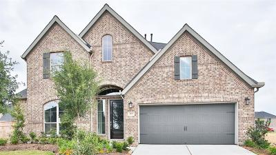 Fulshear Single Family Home For Sale: 3407 Willow Crescent Court