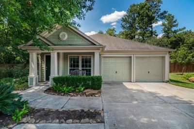 Houston Single Family Home For Sale: 11903 Shallow Oaks Drive