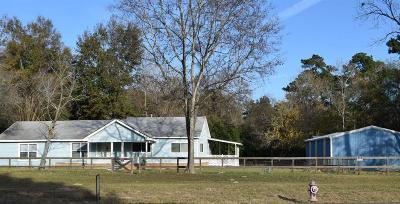 Conroe Single Family Home For Sale: 18363 Fm 1484 Road