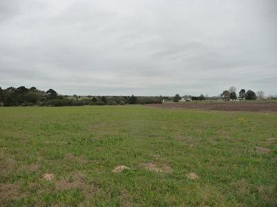 Bellville Farm & Ranch For Sale: 00000 Fm 1456 Road