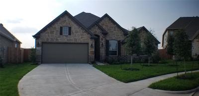 Rosenberg Single Family Home For Sale: 2206 Alden Bay Court