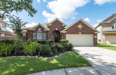 League City Single Family Home For Sale: 1031 Walnut Pointe