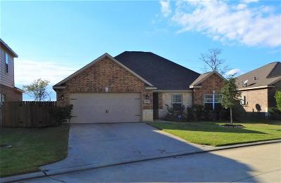 Hockley Single Family Home For Sale: 20607 Silver Tea Avenue