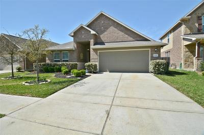 Tomball Single Family Home For Sale: 13022 Thorn Valley Court