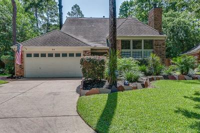 The Woodlands Single Family Home For Sale: 34 E Stony Bridge Court