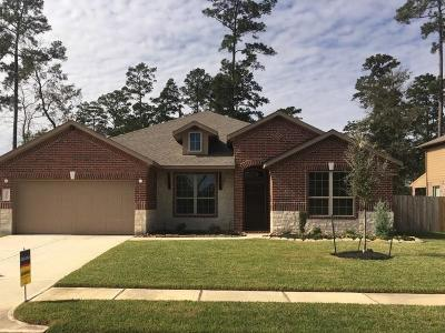 Conroe Single Family Home For Sale: 14115 N Wind Cave Court