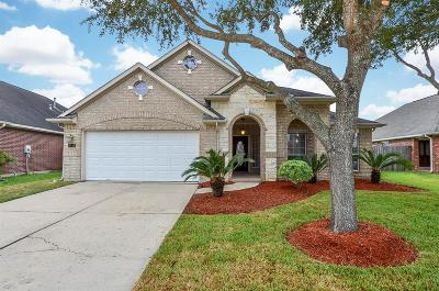 Fort Bend County Single Family Home For Sale: 4718 Owens Glen Court