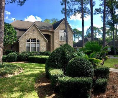 Houston Single Family Home For Sale: 4010 W Pine Brook Way