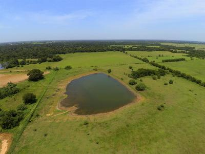 Bellville Farm & Ranch For Sale: 10305 Fm 1456