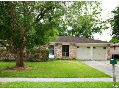 Friendswood Single Family Home For Sale: 16738 David Glen Drive