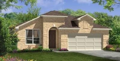 Pearland Single Family Home For Sale: 2007 Clearwater Grove Lane
