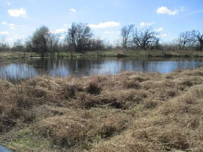 Weimar Farm & Ranch For Sale: 0000 County Rd 451