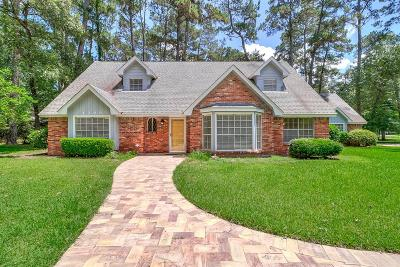 Kingwood Single Family Home For Sale: 1200 Mistletoe Lane