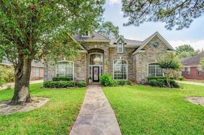 Galveston County, Harris County Single Family Home For Sale: 18826 Mountain Shade Drive