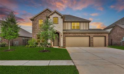 Galveston County Single Family Home For Sale: 2805 Bernadino Drive