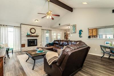 Houston Single Family Home For Sale: 10115 Glenkirk Drive
