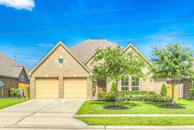 Pearland Single Family Home For Sale: 2205 Lost Bridge Lane