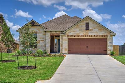 Montgomery Single Family Home For Sale: 223 Racetrack Lane
