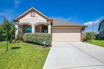 League City Single Family Home For Sale: 202 Lighthouse Bay Lane