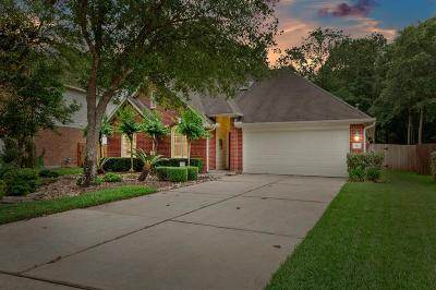 Conroe Single Family Home For Sale: 6 Prairie Oak Drive