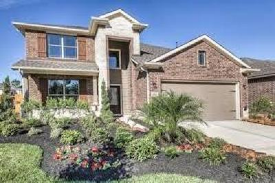 Houston Single Family Home For Sale: 903 Carriage View Lane
