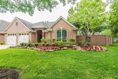 Houston Single Family Home For Sale: 2619 S Strathford Lane