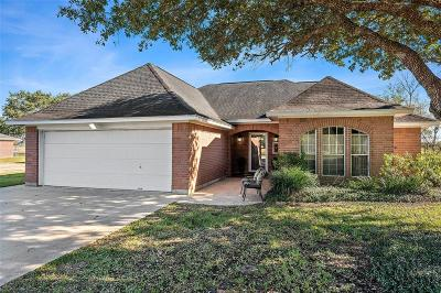 Alvin Single Family Home For Sale: 2889 County Road 155