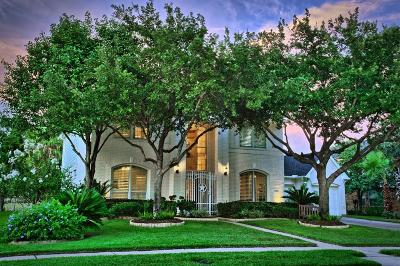 Katy Single Family Home For Sale: 2423 Blue Water Bay Drive