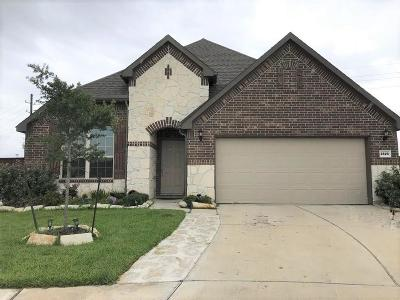 Pearland Single Family Home For Sale: 3529 Watzek Way