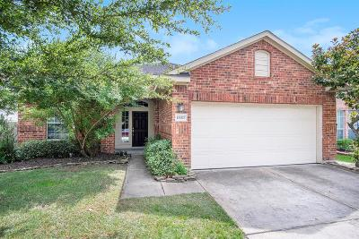 Houston Single Family Home For Sale: 11627 Forest Wind Lane