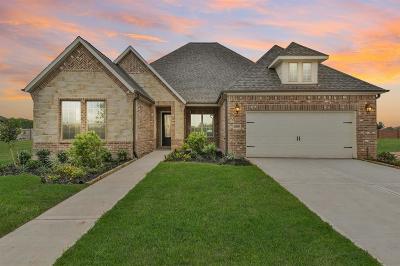 Missouri City Single Family Home For Sale: 10519 Lantana Pass