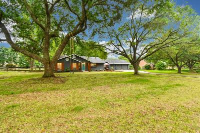Harris County Single Family Home For Sale: 18919 Live Oak Trail