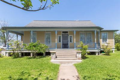 Schulenburg Single Family Home For Sale: 527 Anderson Street