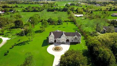 Alvin Single Family Home For Sale: 4681 Wickwillow Street