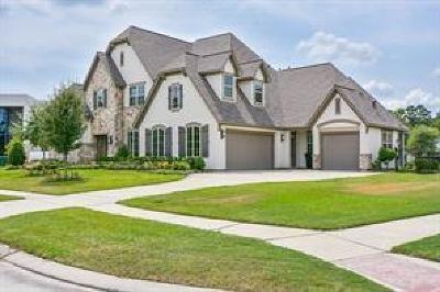 Humble Single Family Home For Sale: 7821 S Dominion Falls Lane