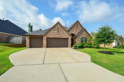 Montgomery Single Family Home For Sale: 115 Pine Crest Circle