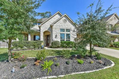 New Caney Single Family Home For Sale: 23339 Robinson Pond Drive